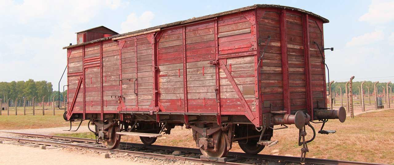 viaggio della memoria treno